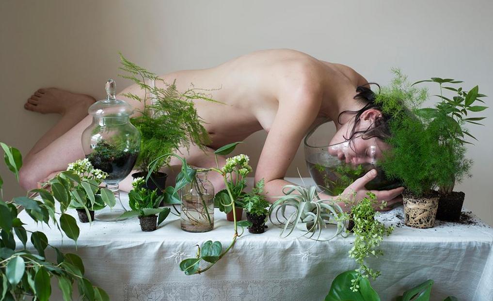 Kasvit, ilma ja ontologia